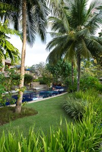 The Garden, the pool, clean and green